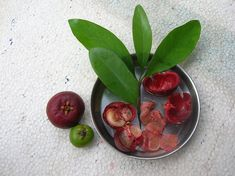 Kokum : Garcinia indica is indigenous to the Western Ghats region of India located along the western coast of the country