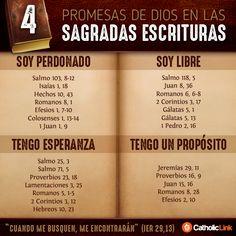 Infografía: 4 promesas de Dios en la Biblia