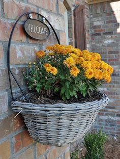 Perfect planter basket to hang by the front door