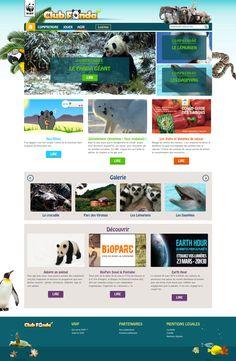 Crocodile, Web Design, Club, Nature, Crocodiles, Design Web, Naturaleza, Nature Illustration, Off Grid