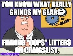It grinds our gears too. #FamilyGuy #whentospay #neuter #spay
