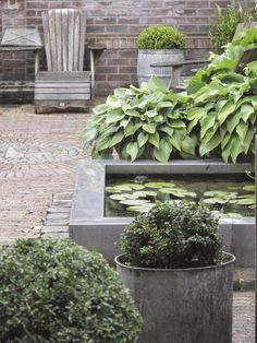 hosta aan de vijver G-STYLE: BINNENPLAATS | sculptural deckchair with alum water feature