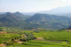Vineyards, Crete, Greece Crete Greece, Vineyard, Mountains, Nature, Summer, Travel, Outdoor, Greece, Wine