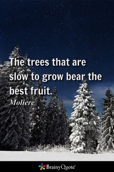 The trees that are slow to grow bear the best fruit. - Moliere