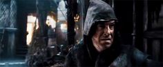 Stephen Colbert in Desolation of Smaug... I had a feeling he was going to show up somewhere, and didn't catch this!