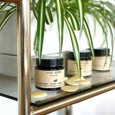 """Thanks @futurekingandqueen for the lovely words 🌿 """"In the spirit of World Chocolate Day, we're using this delicious Chocolate Face Scrub by @zerowastebeautyaustralia 💚🍫. We love the initiative of this brand new beauty label, they plan to shake up the beauty industry. All their products are packaged in glass jars with biodegradable labels and when you finish one of their products, you can return its products back to them (giving you a future discount 😉). ZWBA's products are also 100%…"""