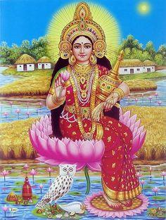Lakshmi | Lakshmi