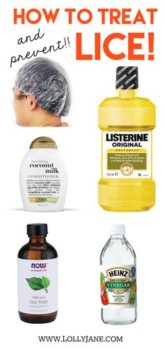 How to treat lice! How to prevent lice! You may have all of these household items laying around your home. Safeguard yourself and kids before they invade! How to treat and prevent lice! # head lice pictures How to treat and prevent lice Listerine, Herbal Remedies, Health Remedies, How To Treat Lice, How To Prevent Lice, Lice Shampoo, Hair Lice, Lice Treatmemt, Coconut Shampoo