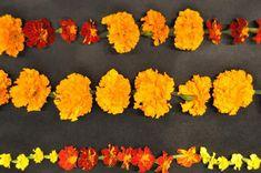 Marigold Garland For  Día De Los Muertos    Garden Design Magazine