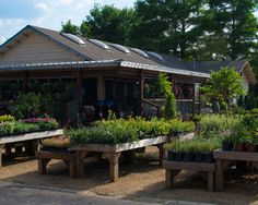 Schmitz Garden Center and Nursery - Flower Mound, Texas