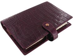 Anxiously awaiting this gorgeous thing . a Christmas present to myself- Filofax Osterley Personal Leather Organizer Plum Fine Pens, Personal Organizer, Fountain Pen Ink, Retail Therapy, Filofax, Love Fashion, Stationery, Organization, Wallet