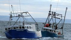 The Tide Nova lost power on the Bay of Fundy on Saturday, but a lobster boat, Dakota & Boys, was able to tow the stricken boat and its crew safely to Hall's Harbour.