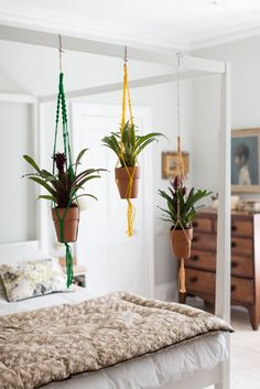 From Ham & High: hanging plants above bed. Build frame instead of canopy bed?