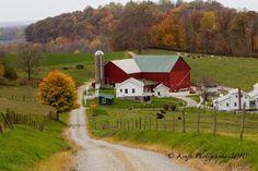 Amish farm homestead
