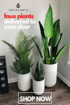 Faux Plants Make You Happy! Artiplanto is trusted by some of the top interior designers in the country! House Plants Decor, Plant Decor, Interior Design Plants, Faux Plants, Indoor Plants, Plants Delivered, Bathroom Plants, Front Door Decor, Home Office Design