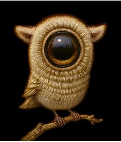 Naoto Hattori Shows Stunning Colors And Details In His Works Graphic Design Illustration, Illustration Art, Weird Gifts, Dark Fantasy Art, Fantasy Artwork, Arte Horror, Lowbrow Art, Wow Art, Pop Surrealism