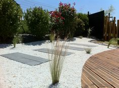 1000 images about yard on pinterest landscaping design bamboo and concr - Prix d une piscine caron ...