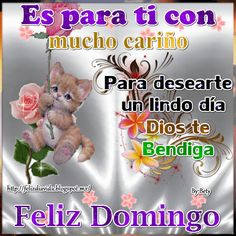 Pin by yurimia villalba on domingo Feliz Domingo Gif, Spanish Greetings, Sunday Greetings, Blessed Sunday, Animation, Happy Saturday, Happy Weekend, Healthy Foods To Eat, Math Assessment