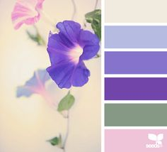 flora hues color palette from Design Seeds Colour Pallette, Colour Schemes, Color Combos, Color Patterns, Feng Shui, World Of Color, Color Of Life, Color Concept, Design Seeds