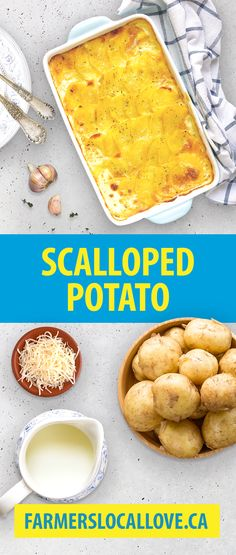 You know it's going to be a great meal when scalloped potatoes are on the table! This recipe uses whole milk from local, Nova Scotian dairy farmers.   Find more recipes that use local ingredients on farmerslocallove.ca