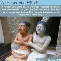 WTF Fun Facts is updated daily with interesting & funny random facts. We post about health, celebs/people, places, animals, history information and much more. New facts all day - every day! Wtf Fun Facts, True Facts, Funny Facts, Random Facts, Wierd Facts, Crazy Facts, Ancient Egypt, Ancient History, European History