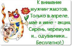 _DprJfn27y0.jpg (890×579)