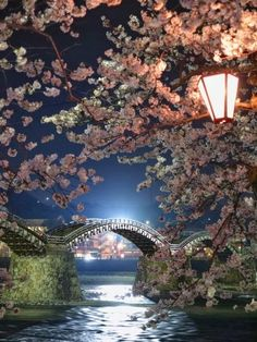 Would love to compare cherry blossom time in Japan to the DC version. --- Cherry Blossoms and Kintai Bridge, Iwakuni, Yamaguchi, Japan Places Around The World, Oh The Places You'll Go, Places To Travel, Beautiful World, Beautiful Places, Beautiful Pictures, Magic Places, Japan Travel, Yamaguchi