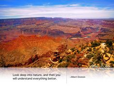 """""""Look deep into nature, and then you will understand everything better.""""  ~Albert Einstein"""