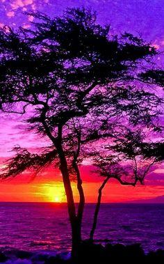 Sunset, Maui Hawaii