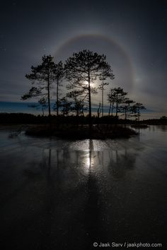 Bog Island in the Moonlight, Estonia, by jaak Sarv, on 500px.
