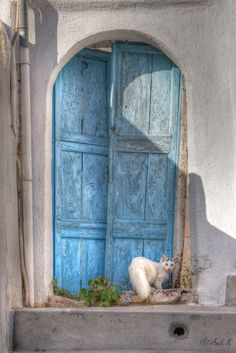 Picture from Santorini, beautiful greek volcano island in the mediterranean sea. Many people believe, that Santorini might have been the legendary Atlantis. Old Doors, Windows And Doors, Baby Blue Colour, Forever, Photo Instagram, Doorway, Cat Life, Monuments, Cool Cats