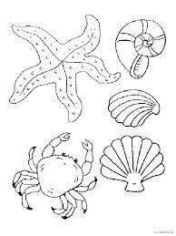 Výsledok vyhľadávania obrázkov pre dopyt morské živočíchy kreslene