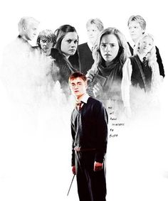 harry potter - we all have reasons to fight
