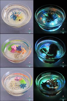 Ocean Themed Glow in the Dark Miniature Ponds by Bon-AppetEats on DeviantArt