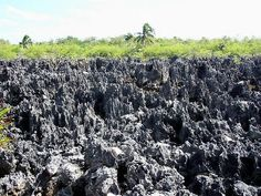 Grand Cayman Island (Ironshore formations in Hell)