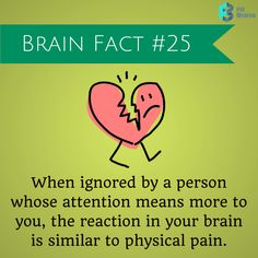 10 Brain Facts! | Did you Know | Pinterest | Brain facts and Facts