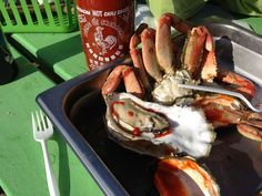 Hungry? Some locally caught Dungeness Crab (sustainable too.) One of the views from Kelly's Brighton Marina http://kellysbrightonmarina.com Great people, Fun and fresh caught Sustainable Seafood (more-so if you just caught it yourself.)