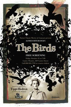"The Birds"" Rod Taylor Tippi Hedren Jessica Tandy Suzanne Pleshette 1963 Hitchcock Jessica Tandy, Horror Movie Posters, Cinema Posters, Horror Movies, Film Posters, The Birds Movie, Love Movie, Old Movies, Great Movies"