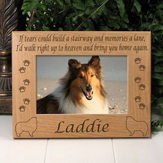 Collie Memorial Dog Frame