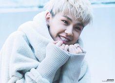 ImageFind images and videos about kpop, btob and ilhoon on We Heart It - the app to get lost in what you love. Sungjae Btob, Im Hyunsik, Minhyuk, Btob Members, Cute Little Kittens, Boy Music, Korean Star, Korean Celebrities, Celebs