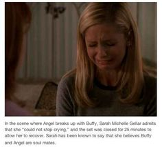 "The story that Sarah Michelle Gellar was as heartbroken over Buffy and Angel as the rest of us were. | 27 Times Tumblr Made ""Buffy"" Fans Weep Openly Vampire Shows, Buffy Contre Les Vampires, Buffy Season 5, Season 1, Buffy Summers, Buffy The Vampire Slayer Funny, Supernatural, Soul Mates, Joss Whedon"