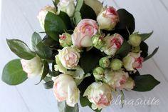 Freilandrosen 2flowergirls - elmasuite