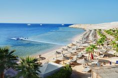 Savoy, Sharm el Sheikh