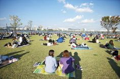 [서울바캉스 ③] 한강하면 가장 먼저 떠오르는 곳, 여의도!   서울의 대표적 시민공원인만큼,  다채로운 프로그램들을 골고루 즐길 수 있어요~  캠핑장에 텐트를 치고 수상음악회에서 들려오는  재즈 선율에 몸을 맡기거나, 선착장에서 유람선을 타고  한강의 열기를 감상할 수도 있죠.