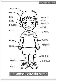 French Language Lessons, French Language Learning, French Lessons, French Flashcards, French Worksheets, French Teaching Resources, Teaching French, French Body Parts, French Basics