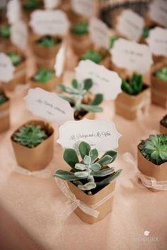 succulent wedding favors and place cards. Cute idea!