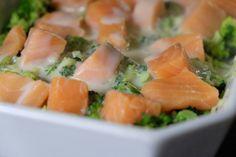 laksegratin, spinat, broccoli, sund, sundt, lækkert, aftensmad, dagensmiddag
