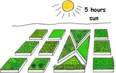 Take the time to properly plan a vegetable garden for maximum success. Follow these home vegetable garden layout principals when planning a vegetable garden.