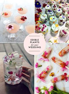 I've been seeing some lovely ideas for adding edible flowers into food items. How fun would that be for a wedding? Whether it be in a cup, or frozen popsicles or cheese, edible flowers would be the perfect addition for … Continue reading →
