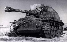 Dicker Max at Stalingrad
